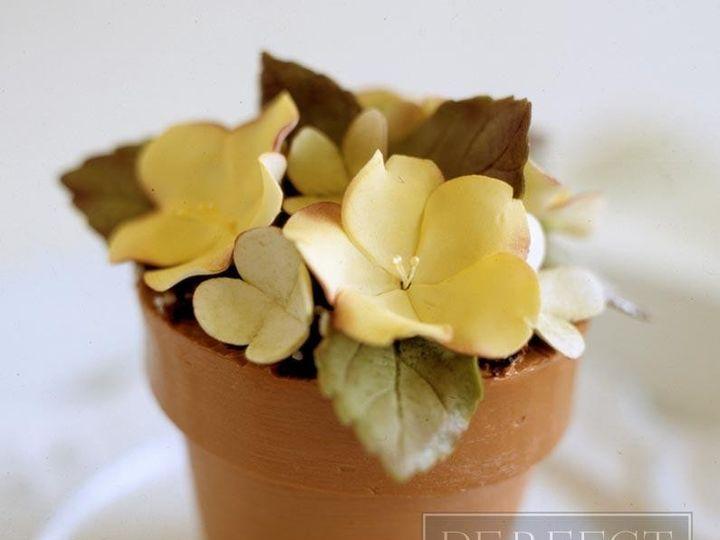 Tmx 1467319318375 10occassion Flowerpot 795px Napa wedding cake