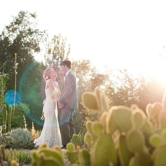 weddingwireprofile