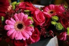 This is a bouquet made up of roses, gerbera daisies, asiatic lilies, alstromeria, and wax flower.