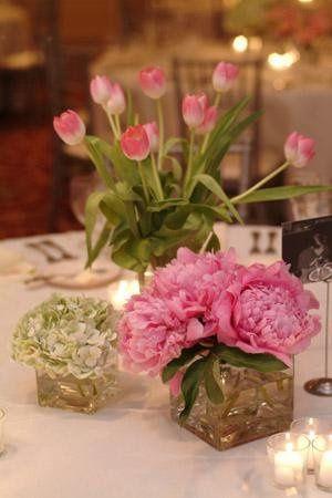 Tmx 1253417140599 Variousweddingpictures2080 Charlotte wedding florist