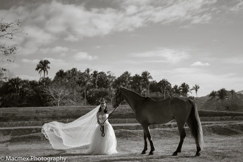 San Pancho wedding