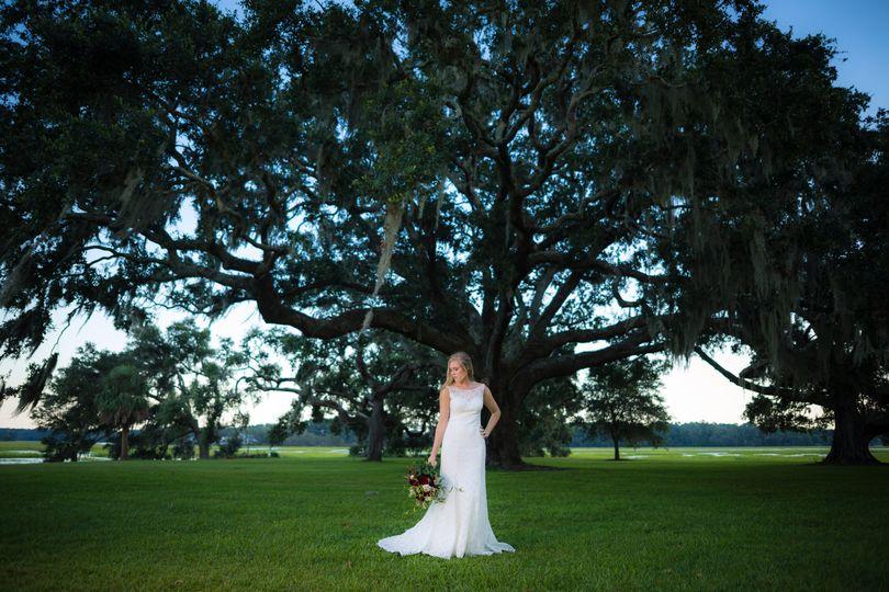 Private Home Oak Tree