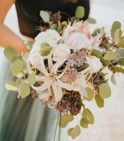 Eucalyptus, protea, airplants