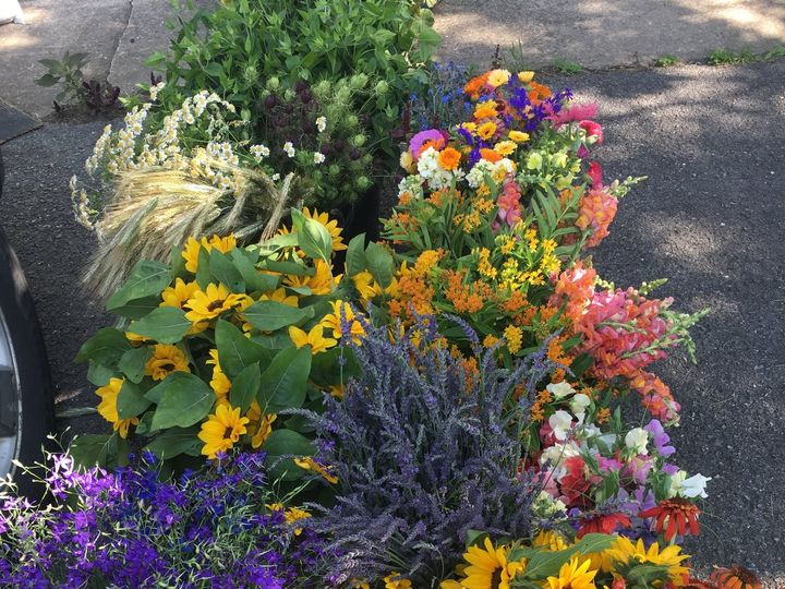 Tmx Img 0986 2 51 1031005 Spring Mills, Pennsylvania wedding florist