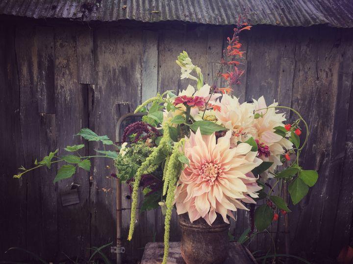 Tmx Img 4879 51 1031005 Spring Mills, Pennsylvania wedding florist