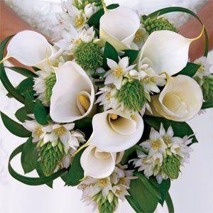 cal bride
