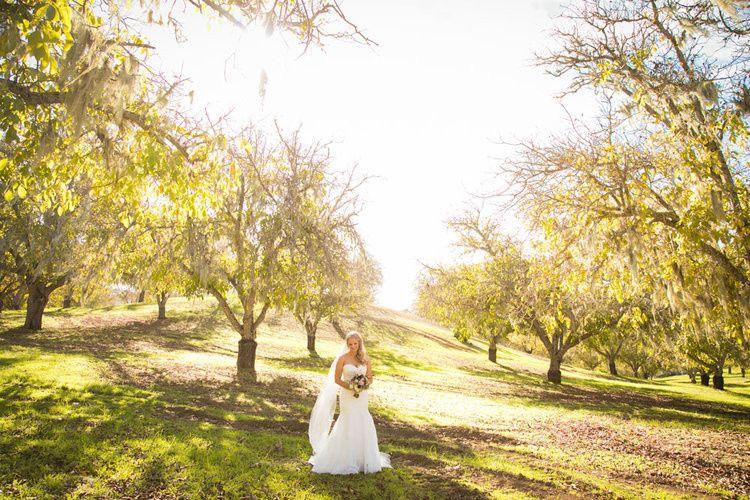 walnut groves