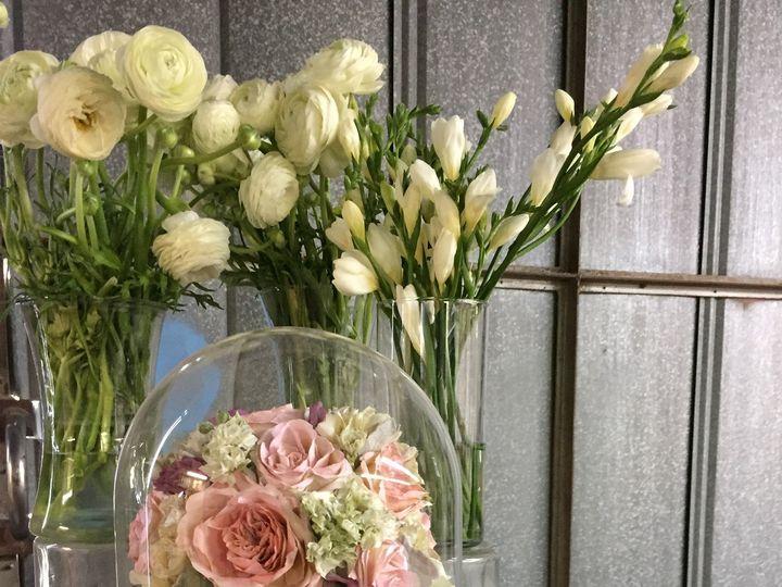 Tmx 1431614575377 Img1069 Orlando, FL wedding florist