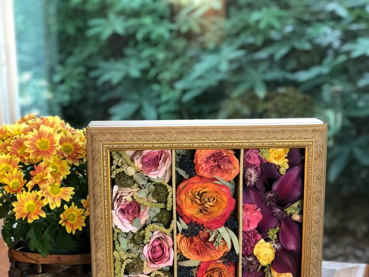 Tmx Img 9883 51 326005 1568915554 Orlando, FL wedding florist