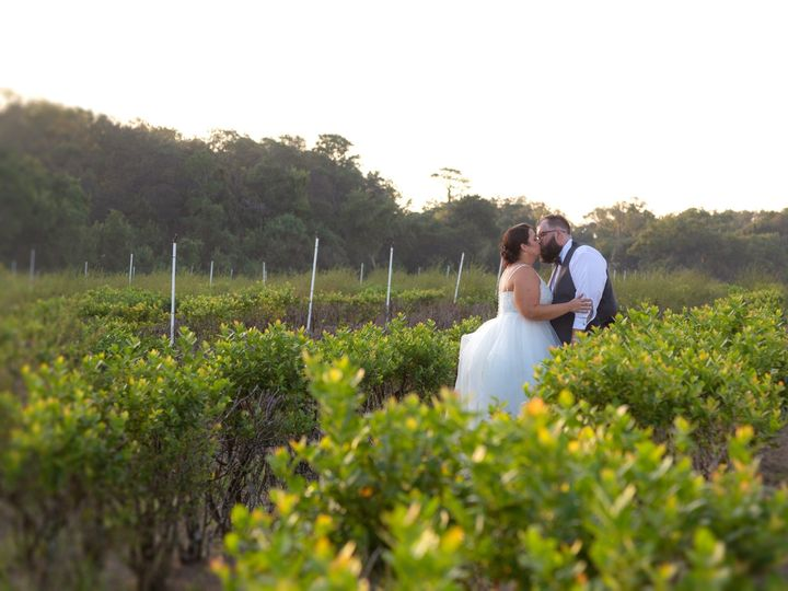 Tmx I44a8801 51 1247105 158299648581451 Orlando, FL wedding photography
