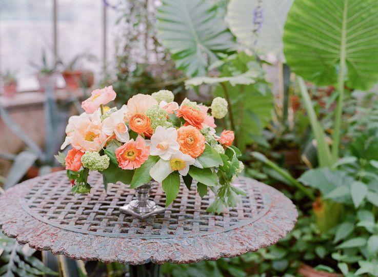 Blue jasmine flowers westfield nj weddingwire blue jasmine 2016ariellanj122 izmirmasajfo