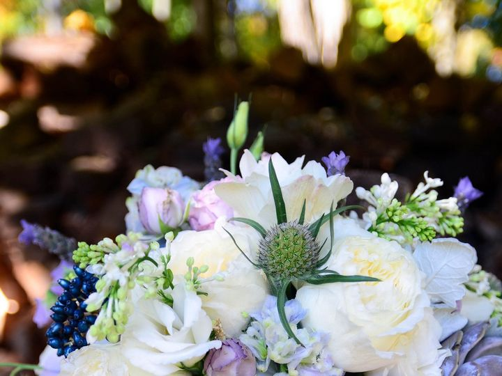 Tmx 1468271659627 Blue Jasmine 20 Of 29 Berkeley Heights, NJ wedding florist
