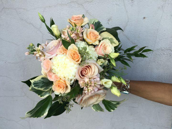 Tmx 1469482630689 Img0146 Berkeley Heights, NJ wedding florist