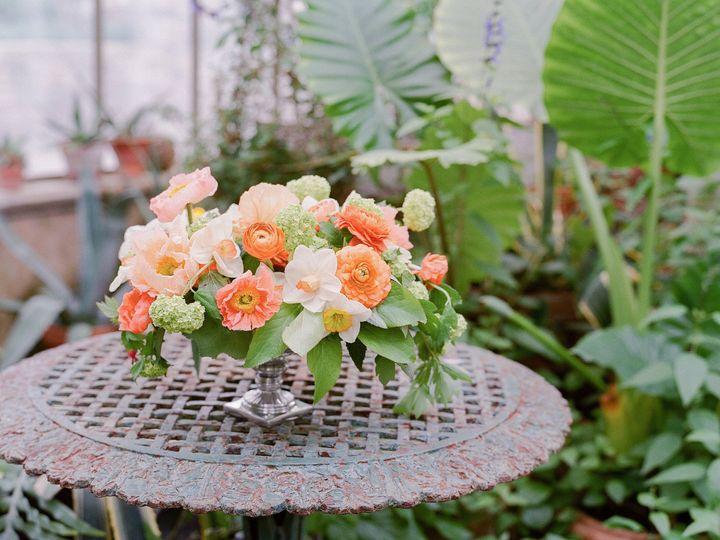 Tmx 1478029060179 2016ariellanj122 Berkeley Heights, NJ wedding florist