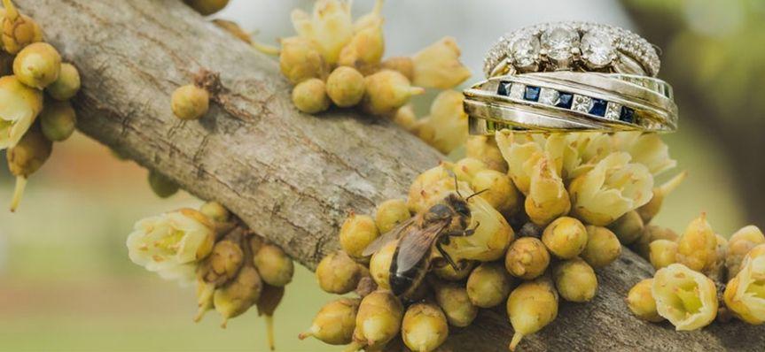 Rings with honeybee
