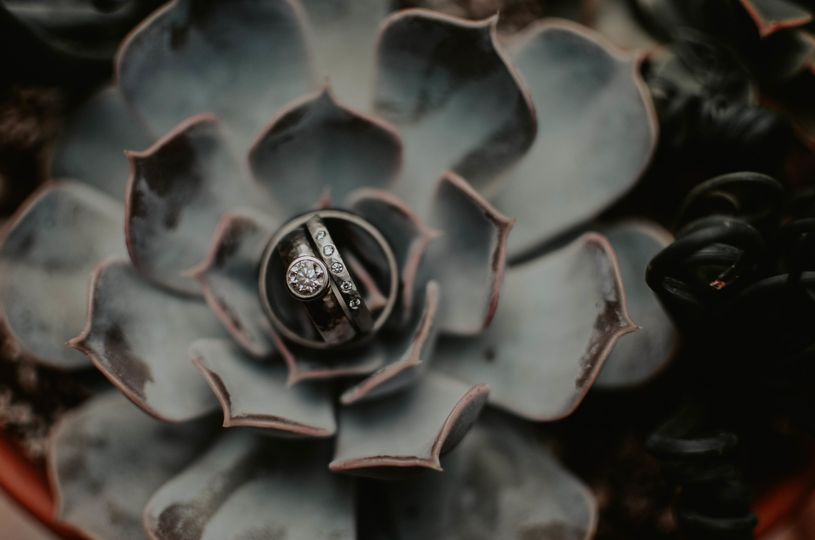 Dreamy little succulent ring shot