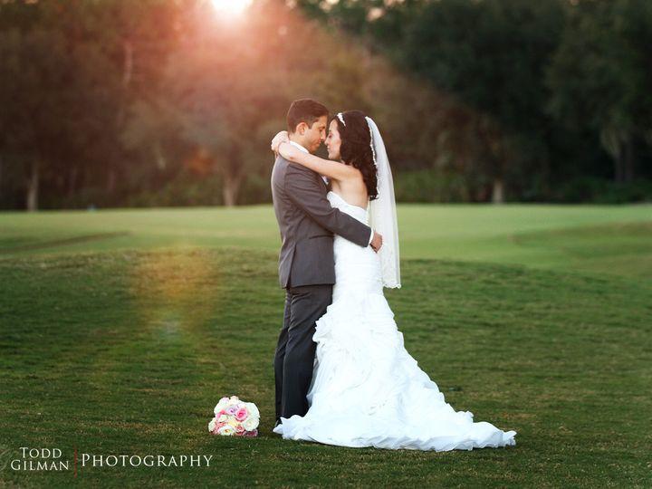 Tmx 1452312793502 Col366 Lutz, FL wedding photography