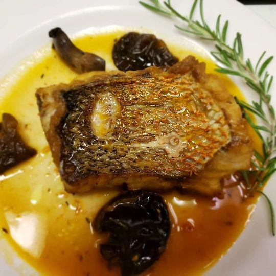 Pan seared snapper with exotic mushrooms
