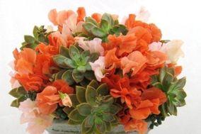 Spruce Floral