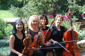 Syringa String Quartet