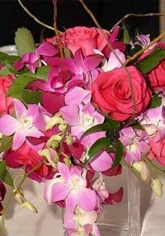 Tmx 1418845114436 1cbf5038 76a4 4a33 8c5d 57f4b00c938d Annandale, District Of Columbia wedding florist
