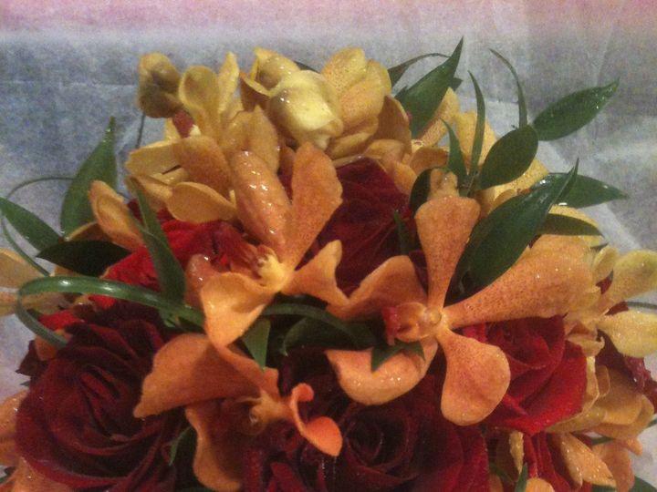 Tmx 1418845287480 Img0693 Annandale, District Of Columbia wedding florist