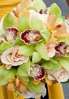 Tmx 1418862917462 191fade3 98c0 4ce2 B9a9 D22b3c10a286 Annandale, District Of Columbia wedding florist