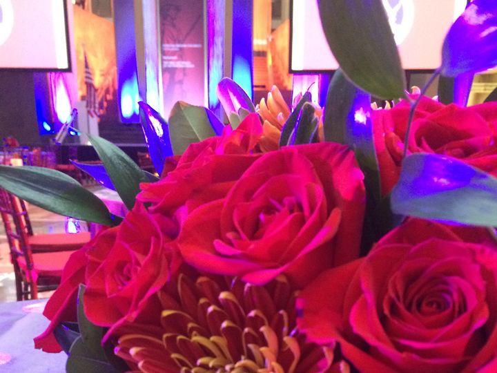Tmx 1418863823999 Img3527 Annandale, District Of Columbia wedding florist