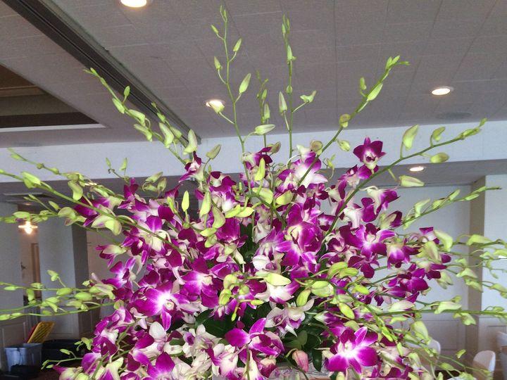 Tmx 1418864239174 Img3183 Annandale, District Of Columbia wedding florist