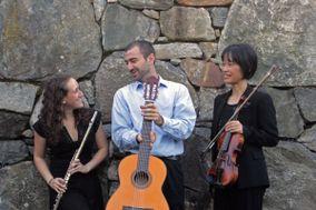 Con Brio Trio