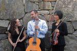 Con Brio Trio image