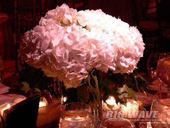 Tmx 1347476592247 Phillips1 Roxbury wedding eventproduction
