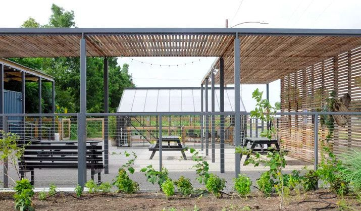 Outdoor space, benches, and greenery