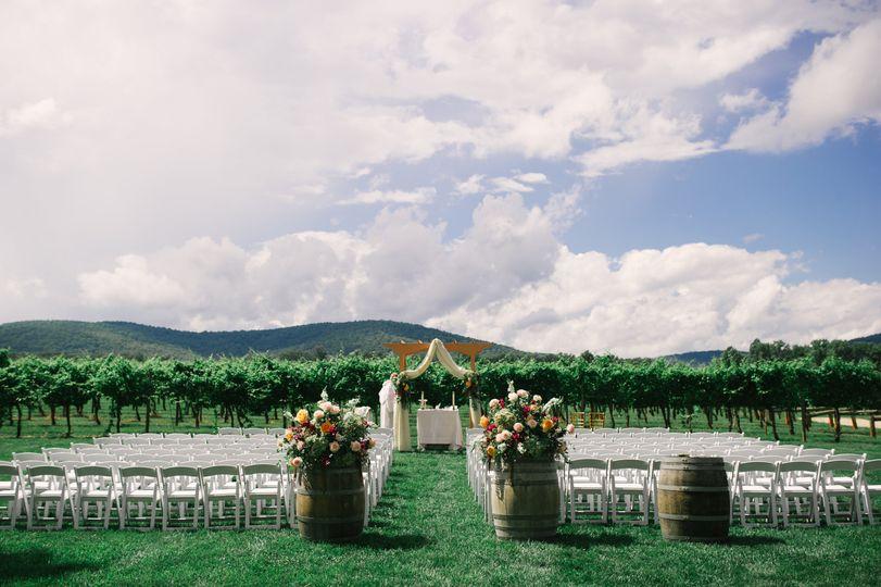 Simplistic vineyard location