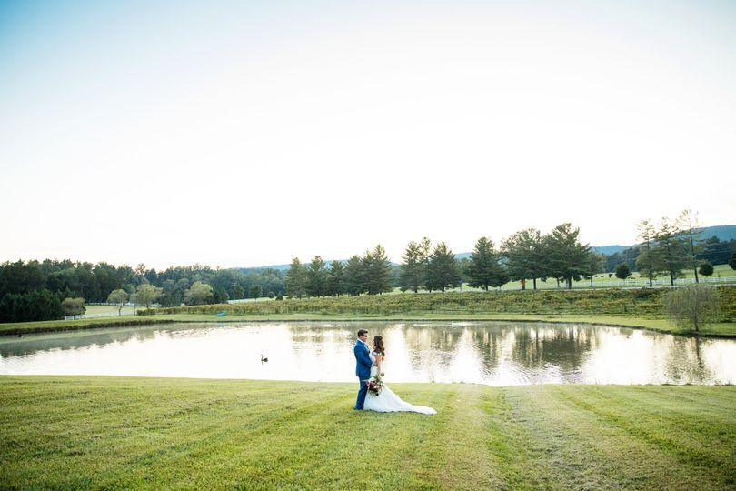 Keswick's pond with swans