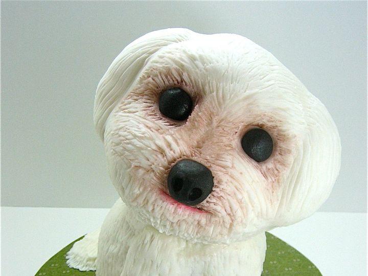 Tmx 1366087622957 Puppy1 Raleigh wedding cake