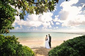 A Rainbow in Paradise Weddings