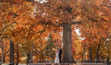 Boston Wedding Photog
