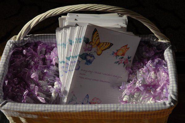 Butterfly Theme Programs