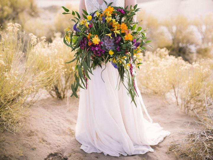Tmx 1450451251327 Sand Dunes029 Denver wedding planner