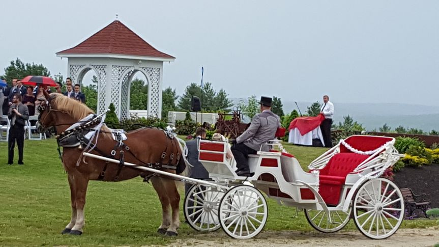 Couple's carriage