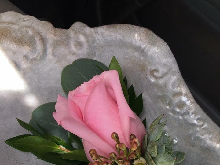 Tmx Img 8672 51 785605 Farmington, ME wedding florist