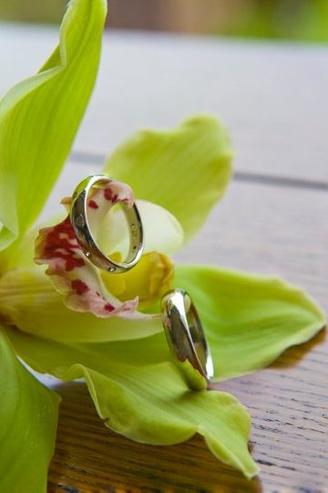 Rings, Orchid, Detail, Close Up, Greg G Photography, Emory Conference Center,