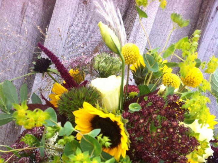 Tmx 1510325565706 Img4575 Burlington, VT wedding florist