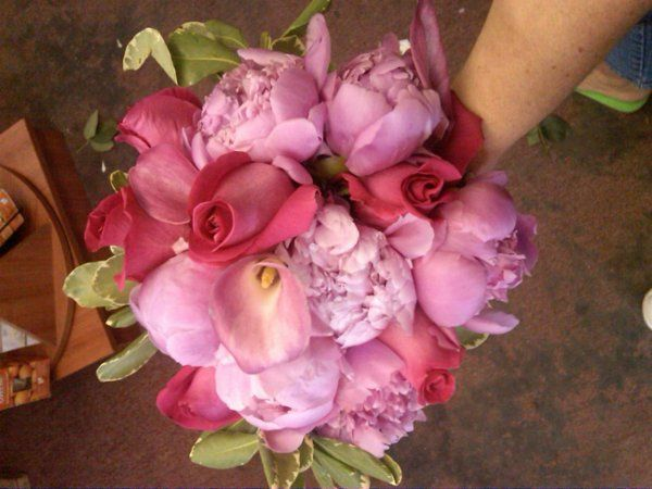 Tmx 1243704664020 IMG001592009052910461 Fishkill, NY wedding florist