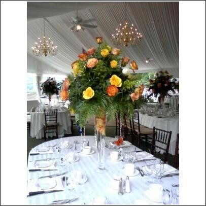 Tmx 1243705859738 2 Fishkill, NY wedding florist