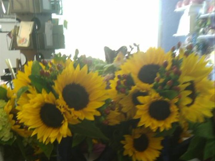 Tmx 1279652607903 IMAG0071 Fishkill, NY wedding florist