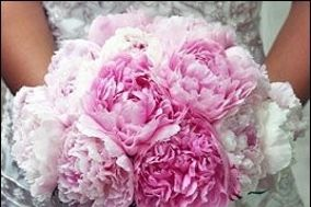 Lauren Farrell Floral