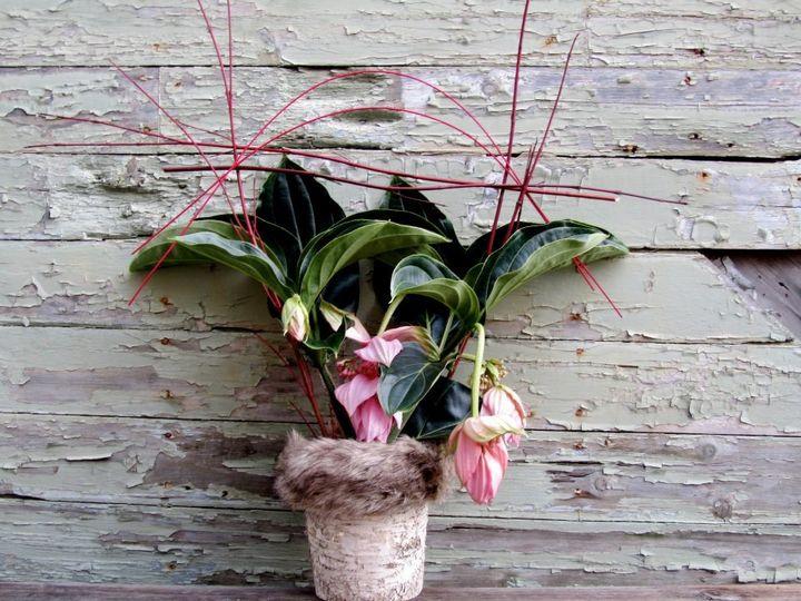 Tmx 1355850696031 3800942737389460113252037295656n Millerton wedding florist
