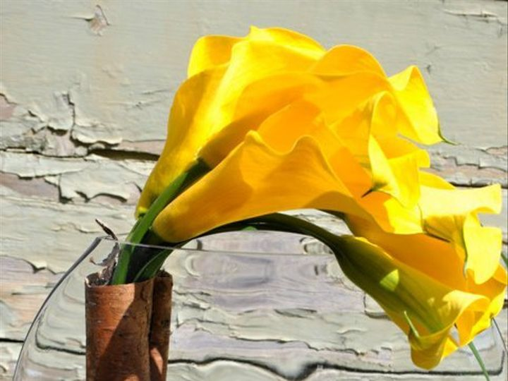 Tmx 1355850923256 207758174409359277618778586n Millerton wedding florist